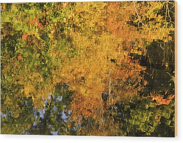 Autumn Reflection Wood Print by Michelle Joseph-Long