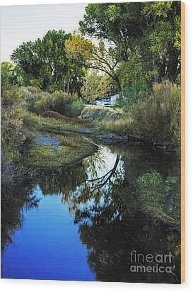 Autumn Reflection Wood Print by Nancy Marie Ricketts