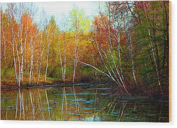 Autumn Reflections Wood Print by James Hammen