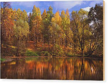 Autumn Reflections Wood Print by Jenny Rainbow
