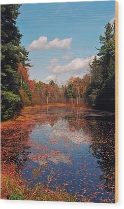 Autumn Reflections Wood Print by Joann Vitali