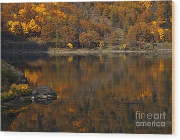 Autumn Reflections Wood Print by Mike  Dawson