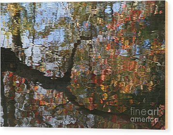 Autumn Reflections  Wood Print by Neal Eslinger