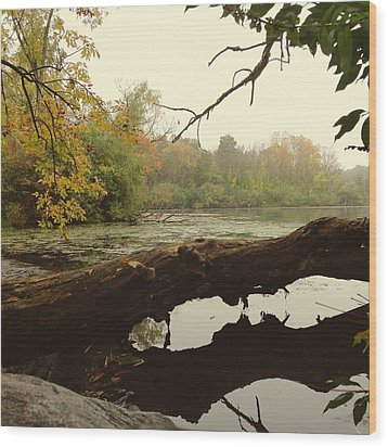 Wood Print featuring the photograph Autumn Reflections by Nikki McInnes