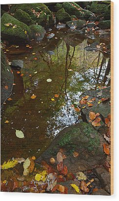 Autumn Reflections Padley Gorge Wood Print