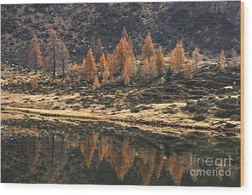 Autumn Reflections Wood Print by Simona Ghidini