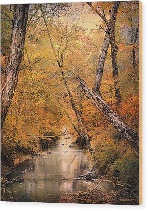 Autumn Riches 1 Wood Print by Jai Johnson