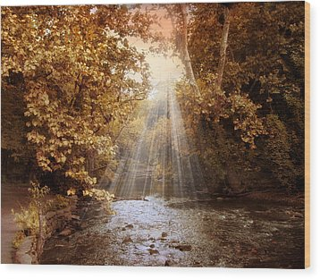 Wood Print featuring the photograph Autumn River Light by Jessica Jenney