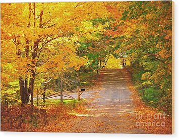 Autumn Road Home Wood Print by Terri Gostola