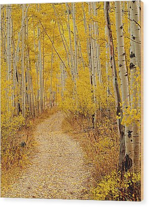 Autumn Road Wood Print by Leland D Howard
