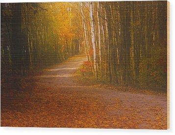 Autumn Roadway Wood Print by Jim Vance