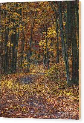 Autumn Roadway Reclamation Wood Print
