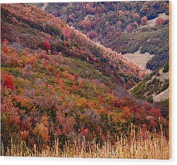 Autumn Wood Print by Rona Black