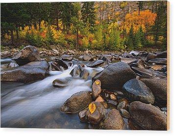 Wood Print featuring the photograph Autumn Rush by Dan Mihai