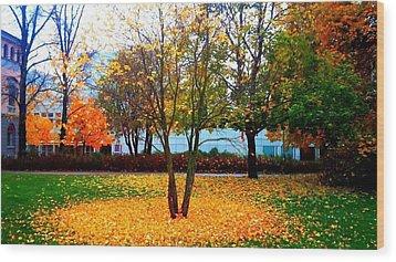 Autumn Series 1.1 Wood Print by Derya  Aktas