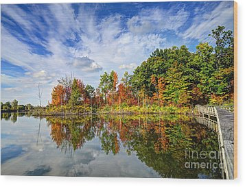 Autumn Sky Wood Print by Rodney Campbell