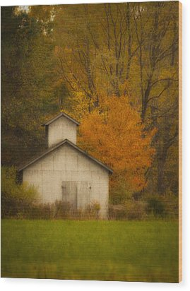 Autumn Solace Wood Print by Cindy Haggerty