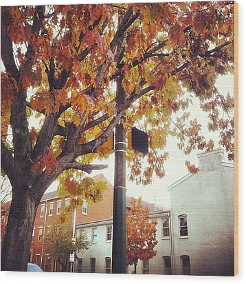 Wood Print featuring the photograph Autumn South Charles Street by Toni Martsoukos