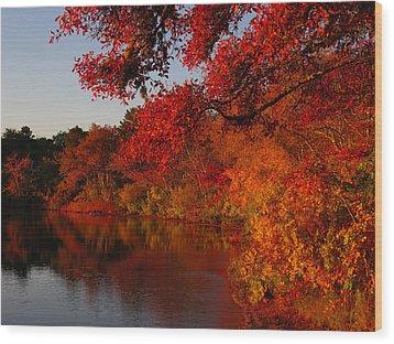 Wood Print featuring the photograph Autumn Splendor  by Dianne Cowen