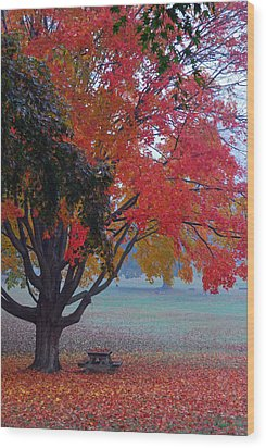 Autumn Splendor Wood Print by Lisa Phillips