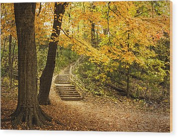 Autumn Stairs Wood Print by Scott Norris