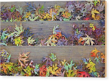 Autumn Steps Wood Print by William Schmid