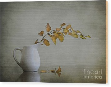 Autumn Still Life Wood Print by Diana Kraleva
