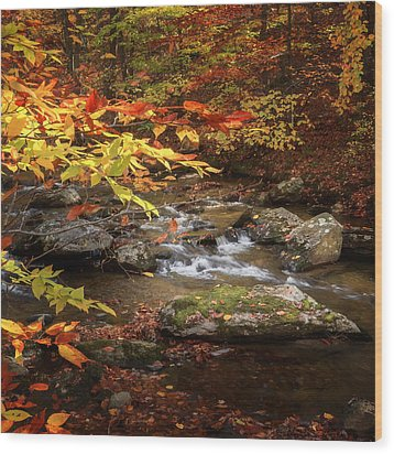 Autumn Stream Square Wood Print by Bill Wakeley