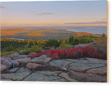 Cadillac Mountain Autumn Sunrise Wood Print