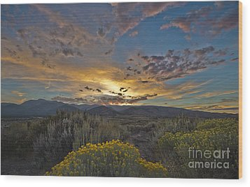 Autumn Sunset Wood Print by Dianne Phelps