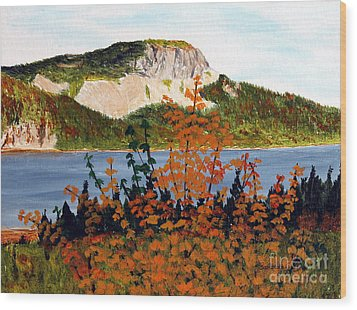 Wood Print featuring the painting Autumn Sunset On The Hills by Barbara Griffin