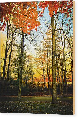 Wood Print featuring the photograph Autumn Sunset  by Sara Frank