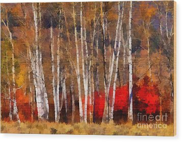 Wood Print featuring the photograph Autumn Tapestry by Clare VanderVeen