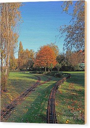 Autumn Tracks Wood Print by Terri Waters