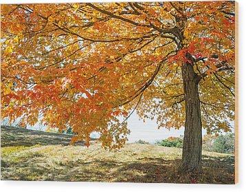 Autumn Tree - 2 Wood Print