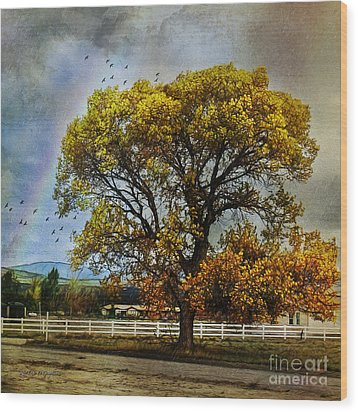 Autumn Tree In Anza Wood Print by Rhonda Strickland