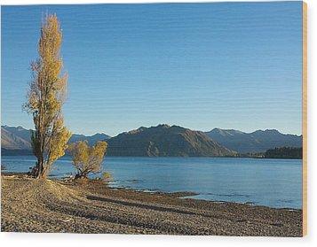 Wood Print featuring the photograph Autumn Trees At Lake Wanaka by Stuart Litoff