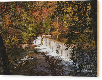 Autumn Trees On Duck River Wood Print