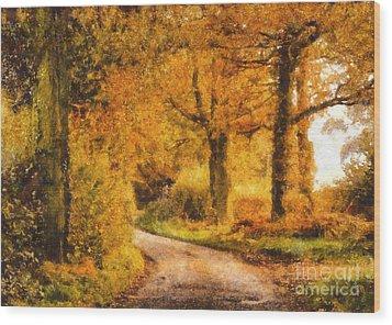 Autumn Trees Wood Print by Pixel Chimp