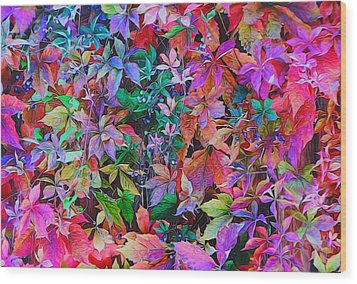 Autumn Virginia Creeper Wood Print by Diane Alexander