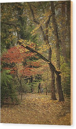 Autumn Walk Wood Print by Diane Schuster