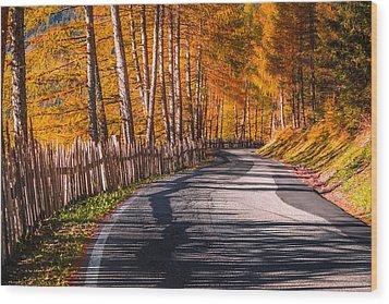 Autumn Way Wood Print