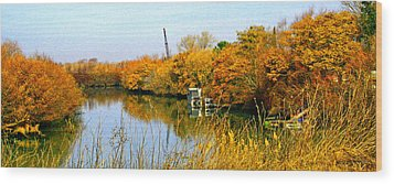 Autumn Weekend On The Delta Wood Print by Joseph Coulombe