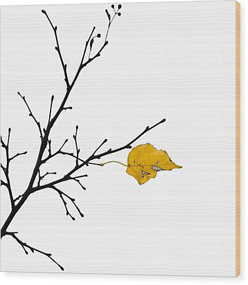 Autumn Winds - Featured 3 Wood Print by Alexander Senin