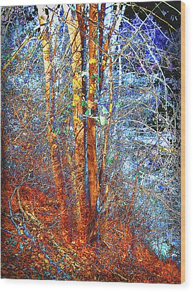 Autumn Woods Wood Print by Ann Powell