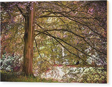 Autumnal Colors In The Summer Time. De Haar Castle Park Wood Print by Jenny Rainbow
