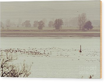 Autumnal Dreamland Iv Wood Print