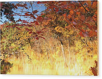 Autumnal Fire Wood Print by James Hammen