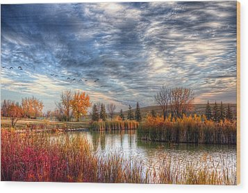 Autumnal Morn Wood Print by Larry Trupp