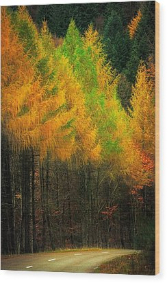 Wood Print featuring the photograph Autumnal Road by Maciej Markiewicz
